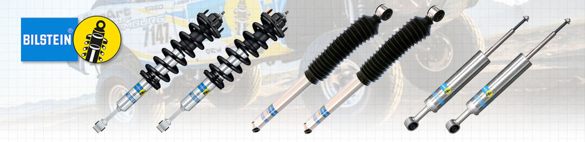 Ford  Bilstein 5100 Shocks